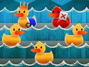 صيد البط: duck shoot