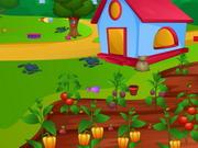 ترتيب وديكور وتنظيف المزرعة