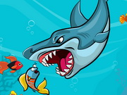 سمكة القرش الشقية: fat shark