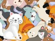 البحث عن القطة الشقية