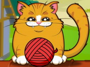 القطة المجنونة: playful kitty