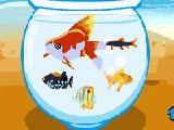 صائد السمك