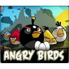 الطيور الغاضبة اون لاين