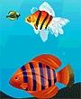 فلاش السمك الكبير ياكل الصغير