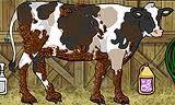 تنظيف البقر