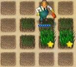 زراعة المزرعة