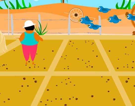 مزرعة الذرة