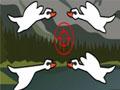 صيد الطيور بالبندقية