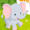 رعاية الفيل الصغير