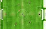 كرة قدم فلاش فيفا