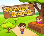 مزرعة البرتقال