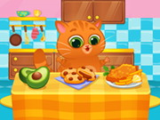 القط الظاهري الجميل