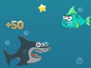 جنون القرش