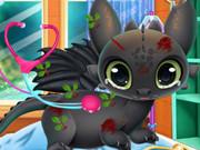 princess elsa dragon grooming