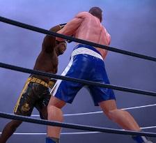 ملاكمة حقيقية