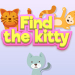 البحث عن كيتي