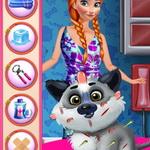 رعاية كلب المجمدة آنا
