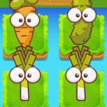 تطور النبات